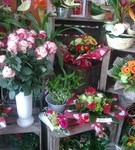 fleuriste-saint-andiol