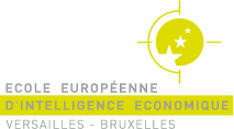 Intelligence économique 3e cycle